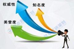 企业必须结合这3大要素进行网络品牌传播